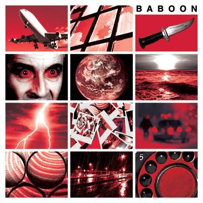 cd_baboon